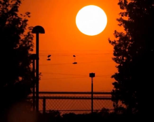 sunset-skateboarder