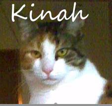 Kinah Name
