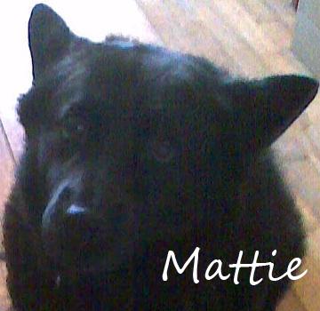 Mattie Name